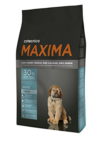 Cotecnica Maxima Maxi Junior Treats for Dogs – 14000 Gr