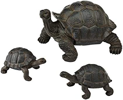 Amazon Com New Creative Evergreen Garden Tortoise And Babies