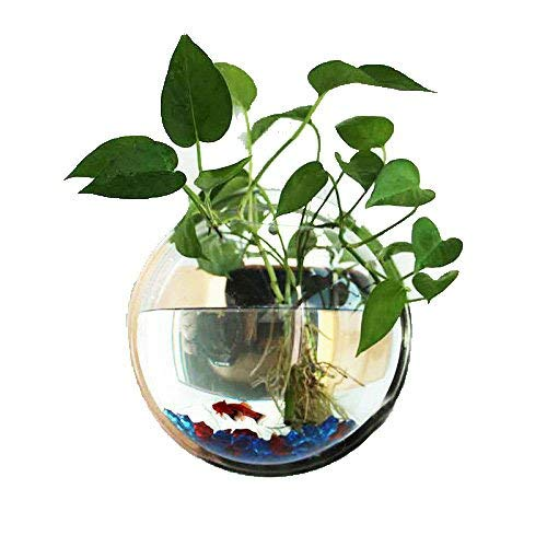 Candyqueen 1Pcs Creative Acrylic Planter Hanging Pot Wall-Mounted Planter Tank Bowl Vase Bubble Aquarium Decor