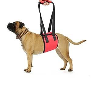 ueetek TRAG ayuda/Andador Vajilla para perros mascotas: Amazon.es ...