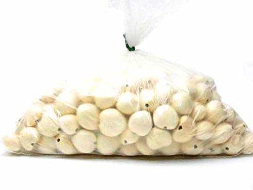 【バルク】ブリーチド ナチュラルホワイト ククイナッツ 1袋   B07QC8XYWP
