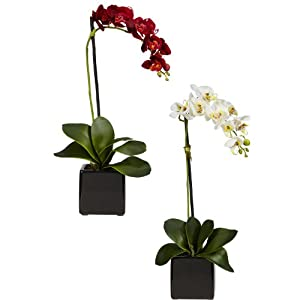 Nearly Natural 4757-S2 Phaleanopsis Orchid with Black Vase Decorative Silk Arrangement, Red and White, Set of 2 62