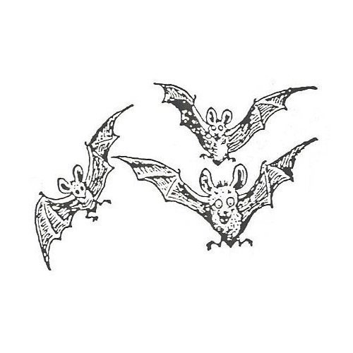 Halloween - Three Bats
