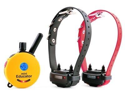Educator ET-302 Two Dog Mini 1/2 Mile E-Collar Remote Dog Training Collar With Vibration, Tapping Sensation and Pavlovian Stimulation by Educator
