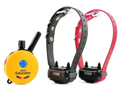 Educator ET-302 Two Dog Mini 1/2 Mile E-Collar Remote Dog Training Collar With Vibration, Tapping Sensation and Pavlovian - Training 302