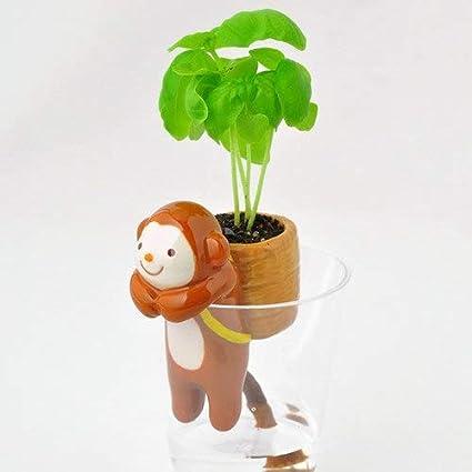 Green Seeds Co. 1 Pieza Autofloreciente Animal Tail Planters Encantadora Flor en maceta Pequeñas macetas de cerámica Jardín Decoraciones de mesa: Rojo