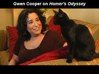 Homer's Odyssey: Gwen Cooper: 9780385343855: Amazon.com: Books