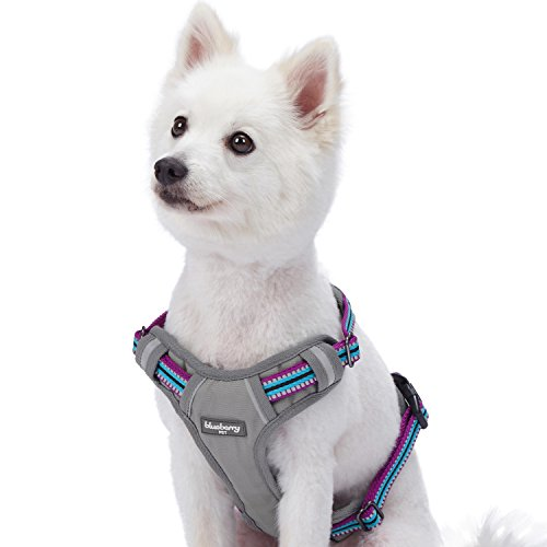"Blueberry Pet 9 Colors Soft & Comfy 3M Reflective Multi-Colored Stripe Padded Dog Harness Vest, Chest Girth 22""-26.5"", Neck 17.5""-26"", Violet & Celeste, Medium, Mesh Harnesses for Dogs"