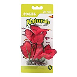 Marina Naturals Foreground Silk Plant, Small, Red