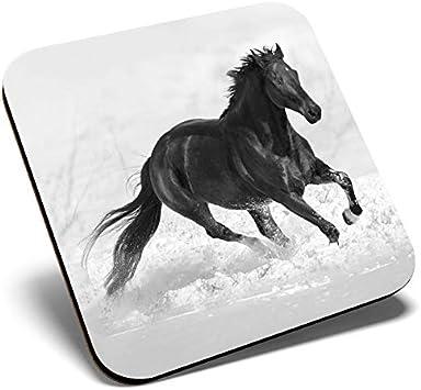 Gran posavasos cuadrado BW – impresionante caballo galopante | Posavasos de calidad brillante | protección de mesa para cualquier tipo de mesa #39628