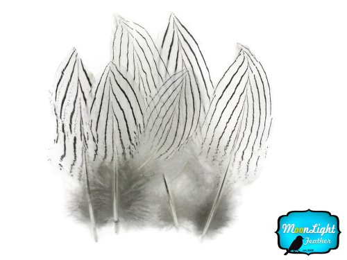 Silver Pheasant Feathers, 0.1 Ounce Pack (Cheek 0.1 Ounce Color)