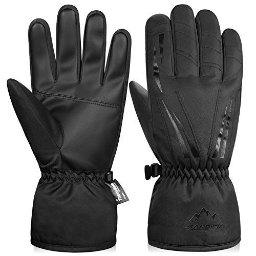 LANYI Winter Gloves for Men Women 3M Thinsulate Insulated Waterproof Ski Thermal Gloves Snowboard Driving Fleece Snow…