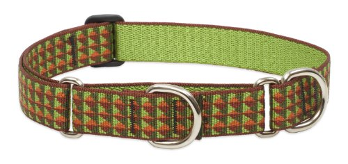 LupinePet 1-Inch Copper Canyon 15-22-Inch Martingale Combo Collar for Large Dogs