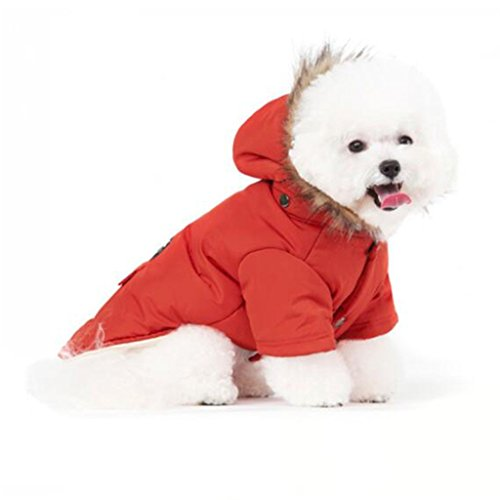 Top 10 recommendation warm dog coats for small dogs for 2019
