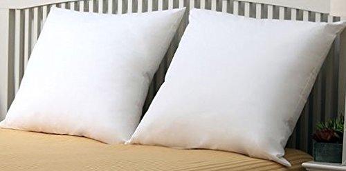 26 x26 pillow insert - 3