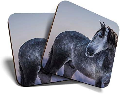 Great Coasters (Set de 2) Posavasos cuadrados/brillantes de calidad para cualquier tipo de mesa, caballo andaluz gris #12472