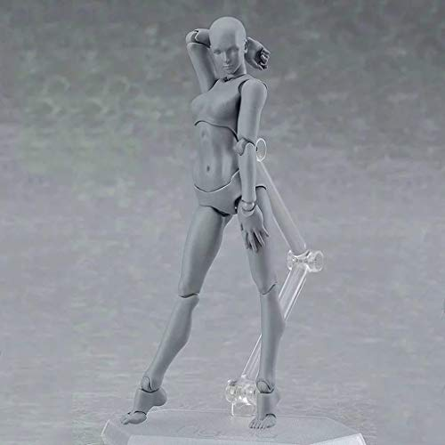 Improve Drawing Skills US Stock COLOR-LILIJ Drawing Model and Action Figures Body for Artists Action Figure Model Human Mannequin Man Woman Kits Painting Sketching Drawing