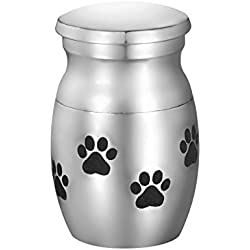 Valyria Pet Memorials Stainless Steel Puppy Paw Tiny Small Pet Cremation Urn