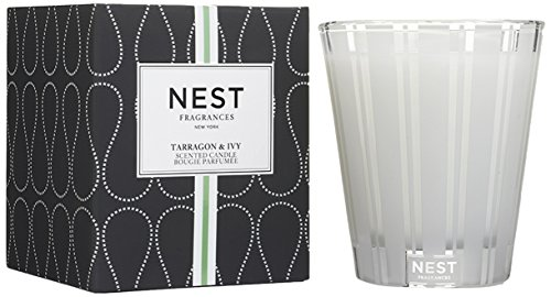 NEST Fragrances Classic Candle- Tarragon & Ivy, 8.1 oz