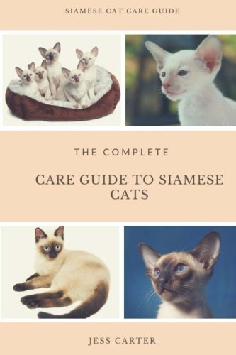 Siamese Cats: Complete Care Guide to Siamese Cats