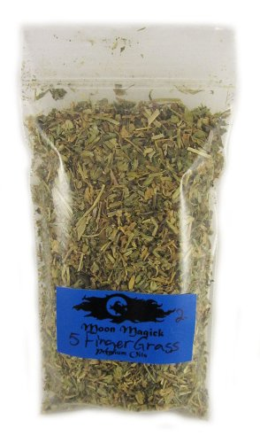 Five Finger Grass Raw Herb