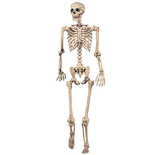 Shatchi 165cm Halloween Skeleton Poseable Decoration Life Size Party Decoration