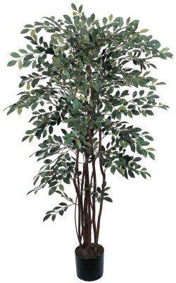 4 Ft Ruscus Silk Tree
