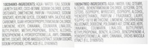 Matrix Biolage Colorlast Shampoo & Conditioner Duo, 13.5 fl oz each by MATRIX (Image #1)