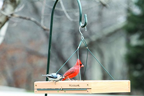 Woodlink 3 in 1 Platform Bird Feeder