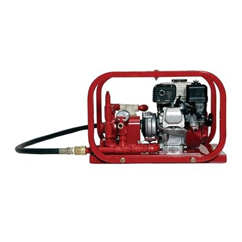 (Rice Hydro RPH-2C Hydrostatic Test Pump, Roller Pump, 5 gpm Up to 300 psi, Pressure Testing, 4 Cycle Honda Engine with Oil Alert)