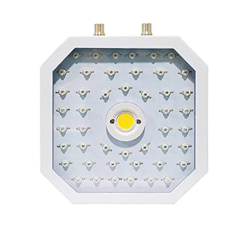 GEDIAO 1100W LED Grow Light, Dual-COB-Chips (10W LED) Full Spectrum LED Plant Growing Lamp with Bloom and Veg Switch for All Indoor Plants