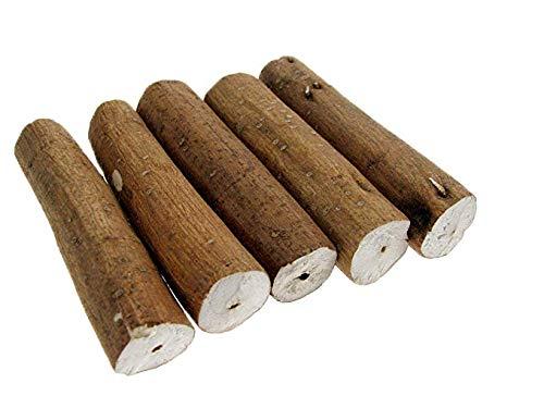 Holundermark-Stangen – Internationale Qualität – 5 Stück – Zum Entölen BZW. Entfetten und Halten von Ölgebern und Uhrenzapfen – C331739