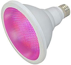 Wasserdichte IP65 LED Grow Lampe, Pflanzenlicht, E27 Base Par38 15W, Vollspektrum, für Pflanzen und Gemüse im Außen- oder Innenbereich