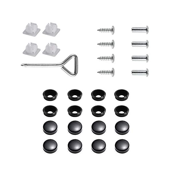 black stainless steel license plate screws