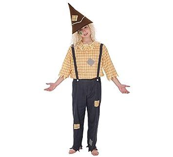 LLOPIS - Disfraz Infantil espantapájaros t-m: Amazon.es: Juguetes ...