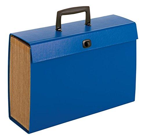 Office Depot Multi-Tab Expanding Carry File, 19-Pockets, Blue, 768435OD768435OD ()