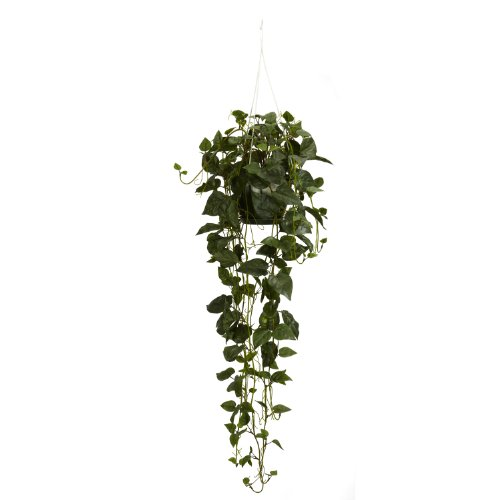 Nearly Natural 4762 Philodendron Hanging Basket Decorative Silk Plant, Green