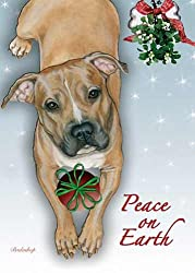 Pit Bull Terrier Christmas Cards : 10 Holiday Cards with Red Envelopes