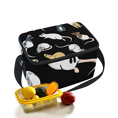 sulated Lunch Box Insulated Lunch Bag Large Cooler Tote Bag For Men and Women Kids Girls Boys With Shoulder Strap ()