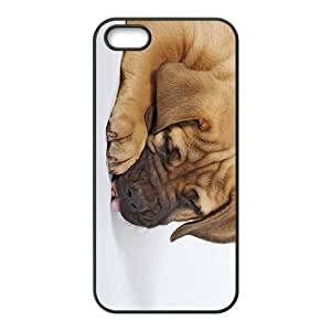 Puppies Dog Hight Quality Plastic Case for Iphone 5s