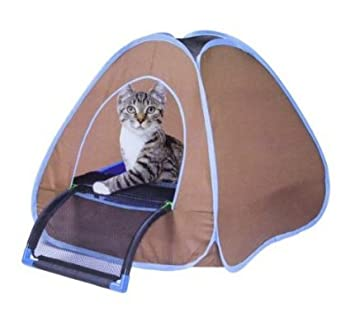Sport Pet Designs Cat Privacy Tent top entry litter box litter boxes for cats  sc 1 st  Amazon.com & Amazon.com : Sport Pet Designs Cat Privacy Tent top entry litter ...