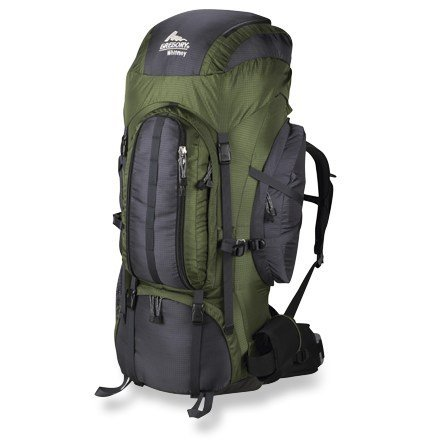 Gregory Whitney 95 Backpack (Lichen,Large)