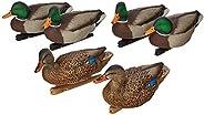 Avian X AvianX Top Flight Duck Open Water Mallard Decoy (6 Pack), Green, Multi, One Size (8060)