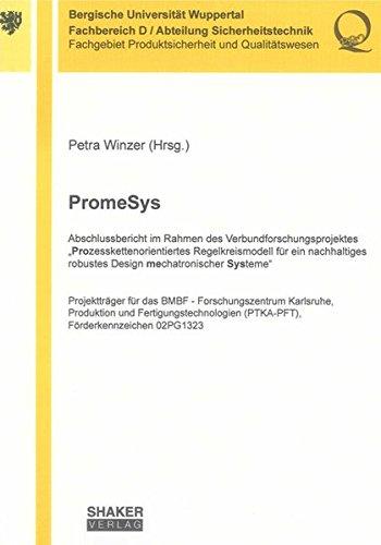 PromeSys: Abschlussbericht im Rahmen des Verbundforschungsprojektes
