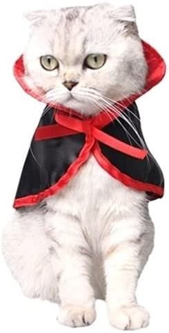 EatingBiting (R) Disfraz de perro gato, cosplay mascota loro ...