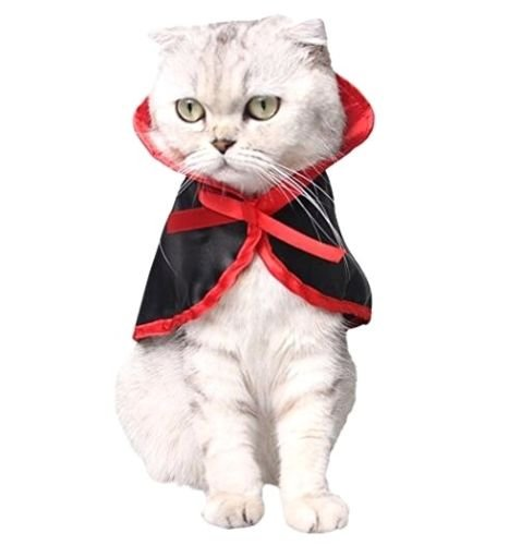 EatingBiting(R)Cat Dog Costume, Cosplay Pet Parrot Costumes Vampire Cloak Halloween Holidays Costumes for Dogs Christmas Cute Cosplay Clothes for Small Dogs & Cats , Chic Gift for Pets -