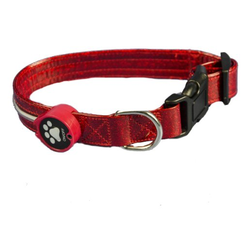 Aviditi BL603-L LED Lighted Dog Collar, Red with Red LED Lights, Large, My Pet Supplies