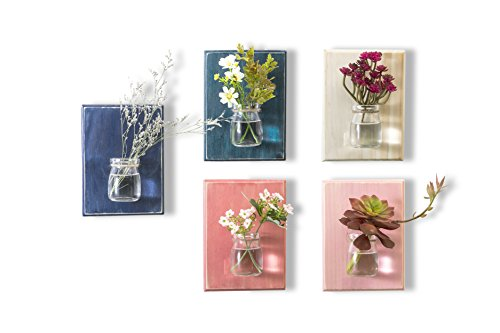 WOOD MEETS COLOR Hanging Planters On the Wall, Home & Office Decor, A set of five Boards(Including Nails and Ropes, No Flower) (Pink Light-pink Ocean-blue Dark-blue White-blue)