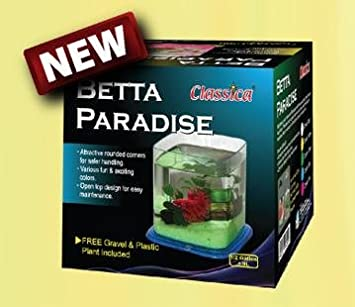 ICA PT072A Bettera Betta Paradise, Incoloro: Amazon.es: Productos ...