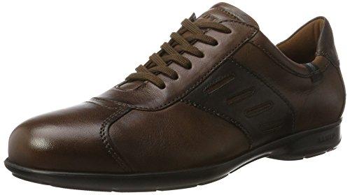 Lloyd Herren Basilicum Sneaker Sigaar / Tdmoro